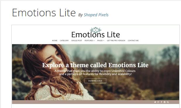 https://wp-themes.com/emotions-lite/
